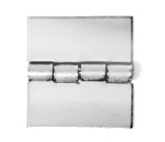 Type 316 Stainless Steel Butt Hinges